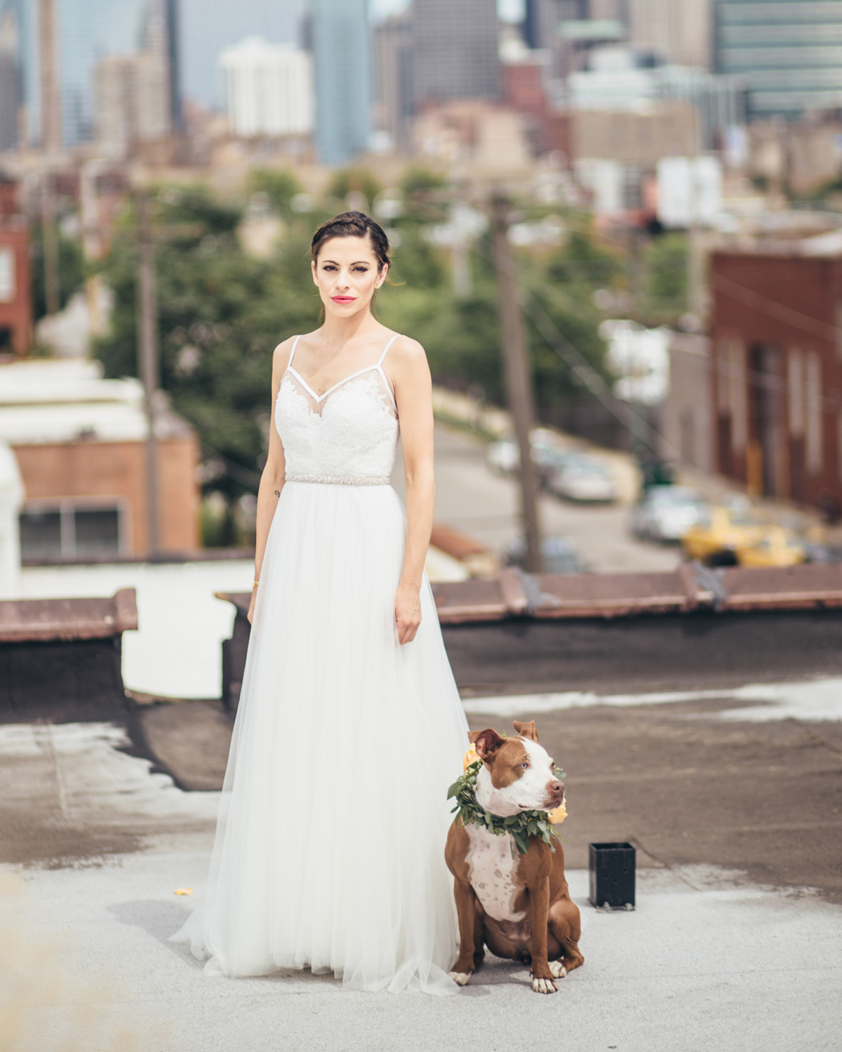 Bride with Dog on Chicago Rooftop