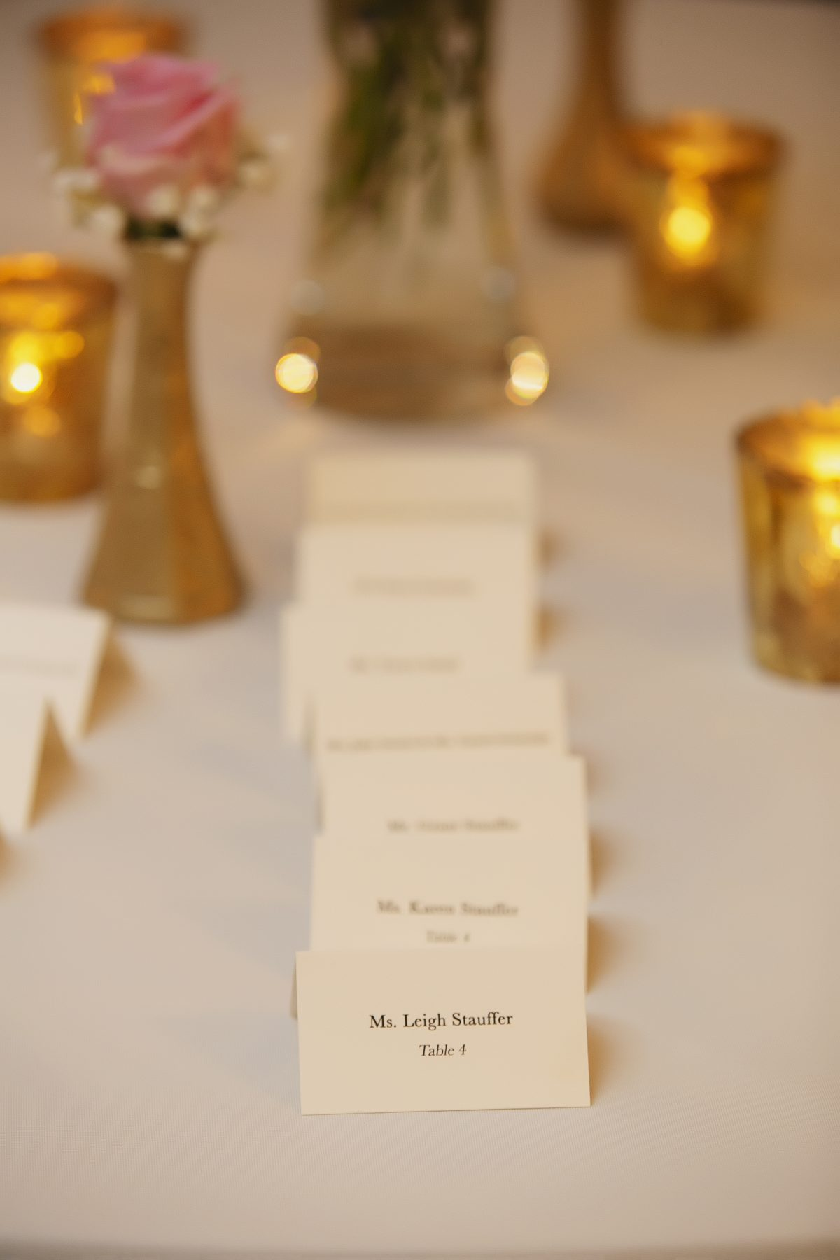 Womens Club of Evanston Wedding