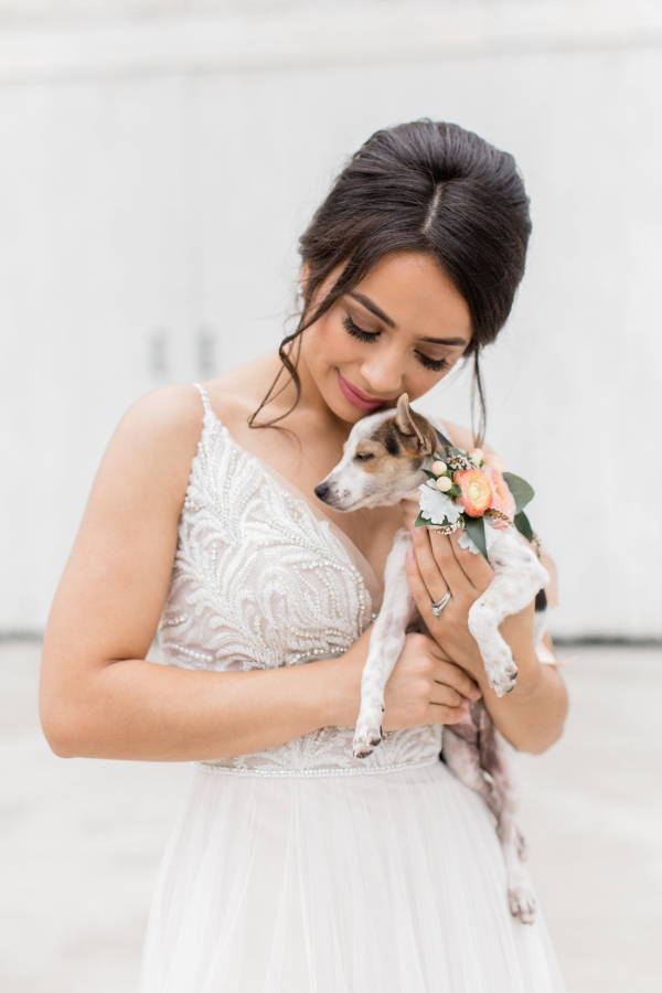 Bride with Adoptable Dog