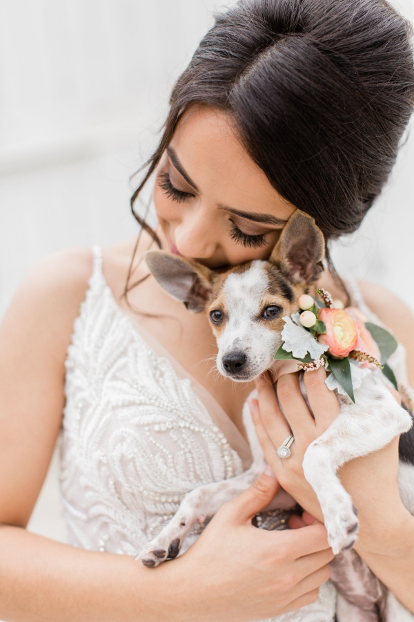 Bride with Dog Up for Adoption
