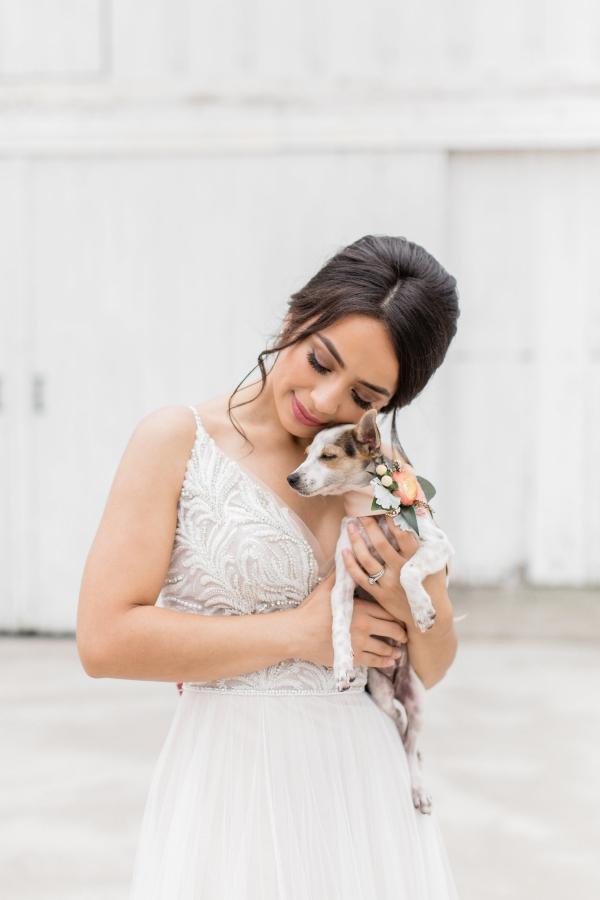 Bride with Rescue Pup