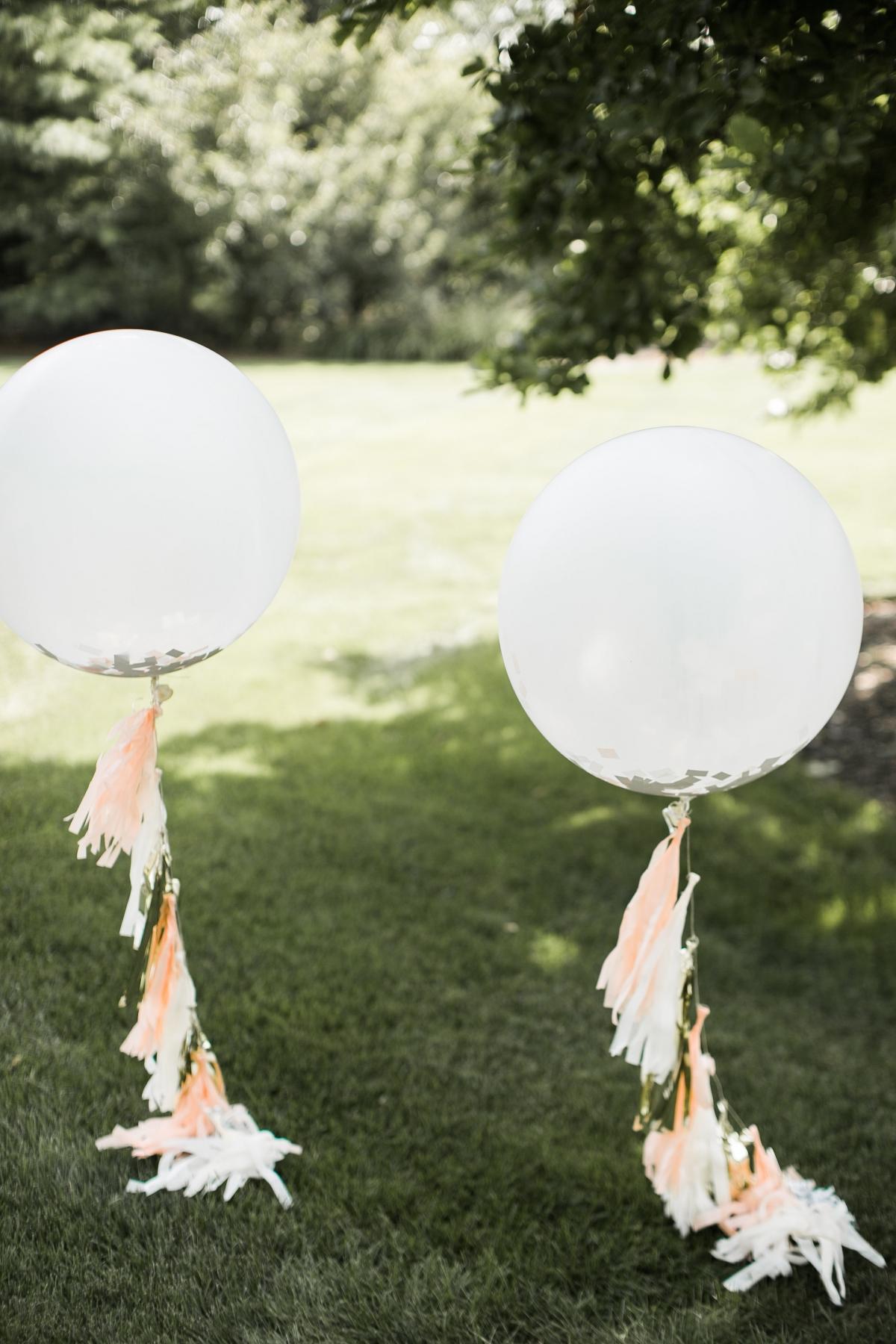 Danada House Chicago Wedding Blush and Borrowed 1