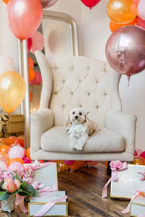 Fun Bridesmaids Shower Inspiration Davids Bridal (27)