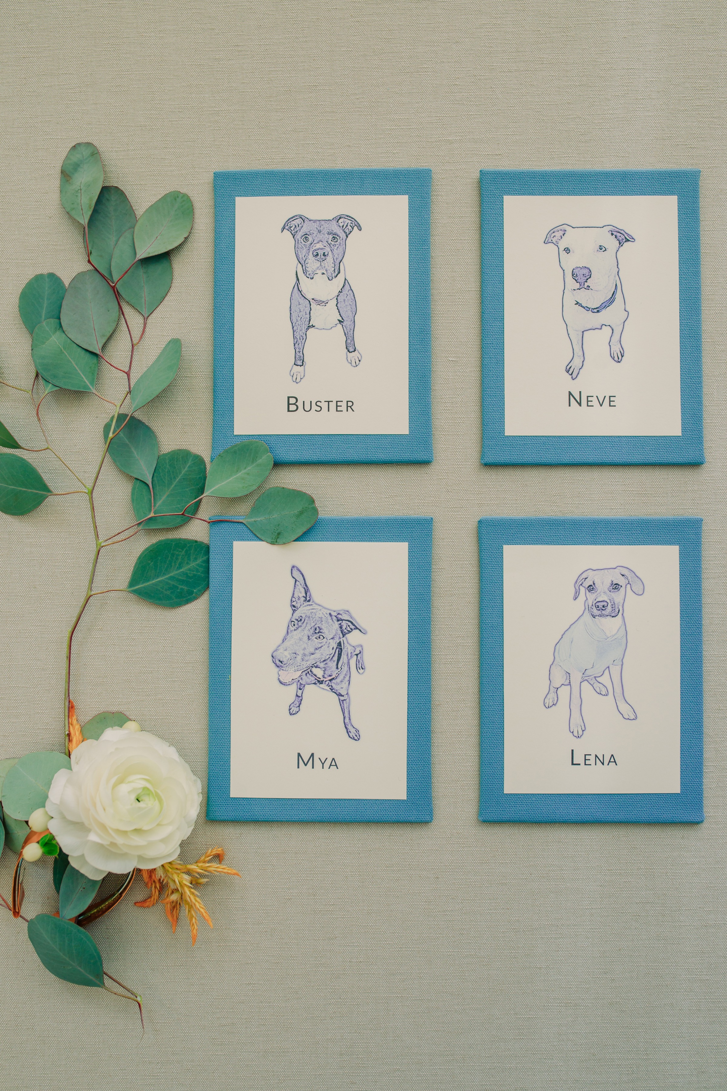 Wedding Inspiration with Adoptable Dogs (1)
