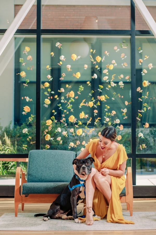 Wedding Inspiration with Adoptable Dogs (2)