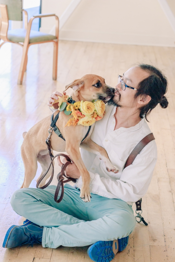 Wedding Inspiration with Adoptable Dogs (26)