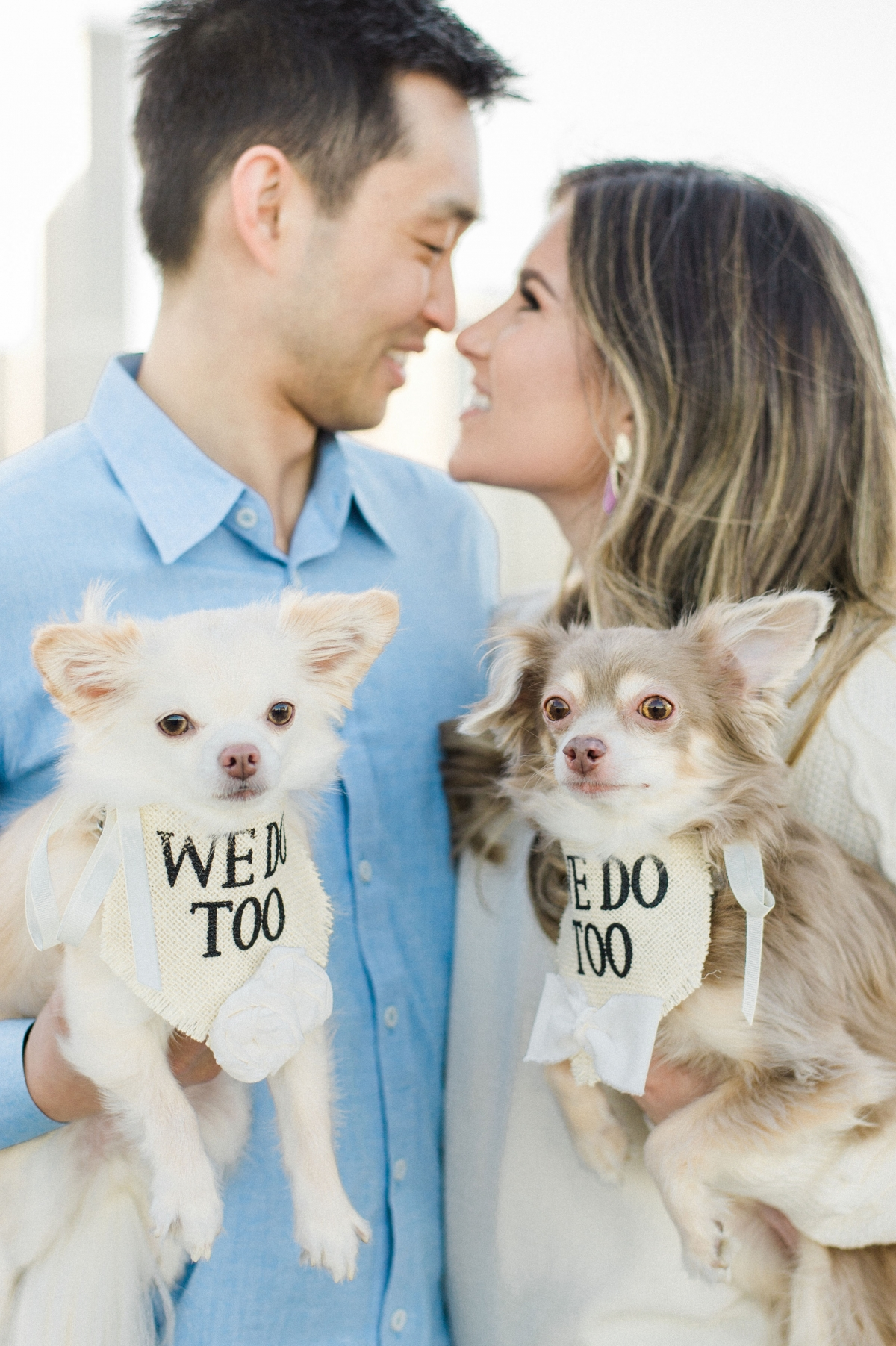 Olive Park Engagement Session with Puppies Nicole Jansma (3)