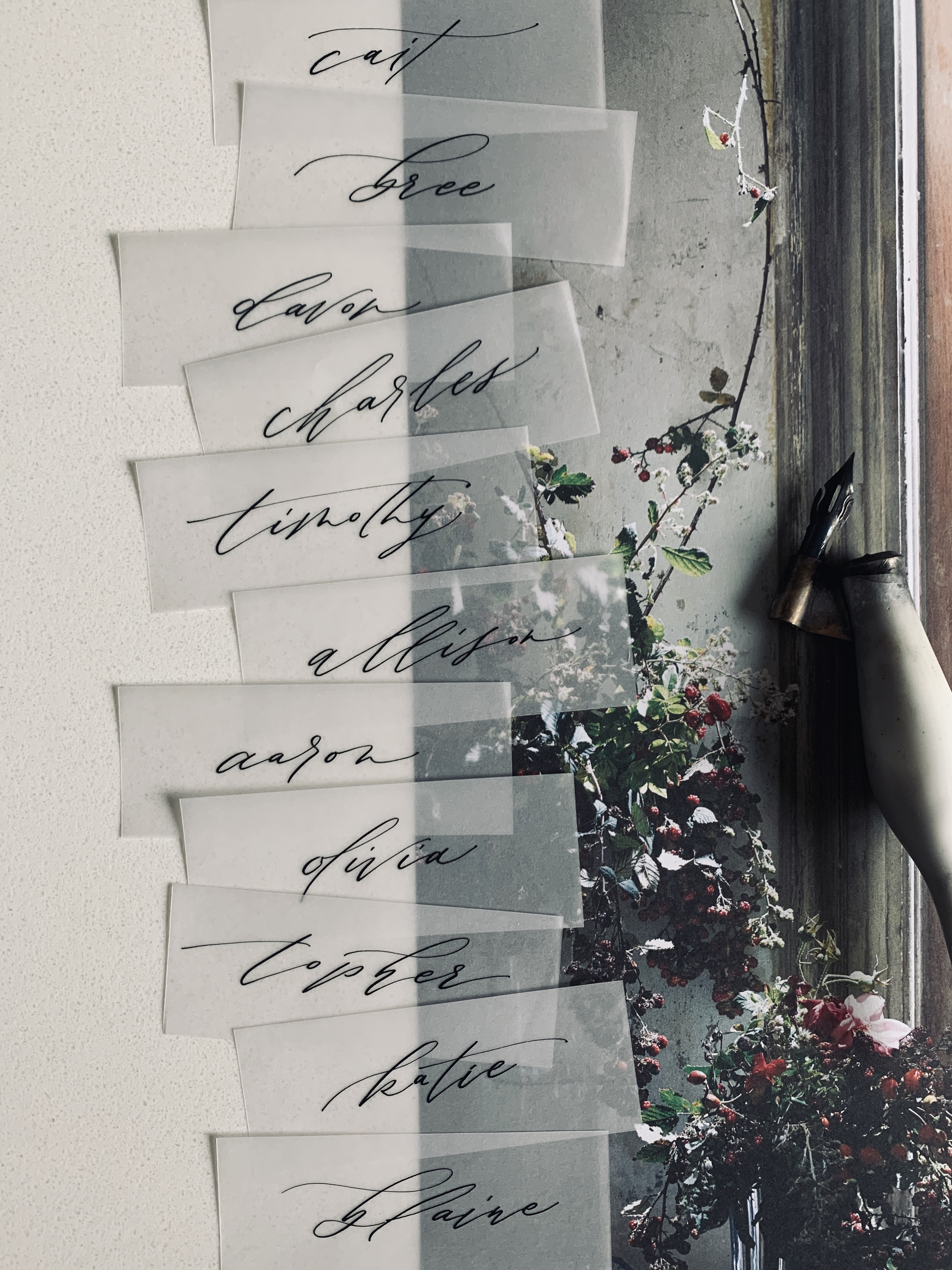 vellum+placecards