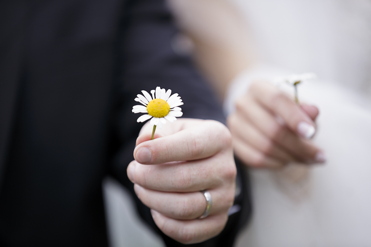 The Bride and Groom Pick Chamomile Together