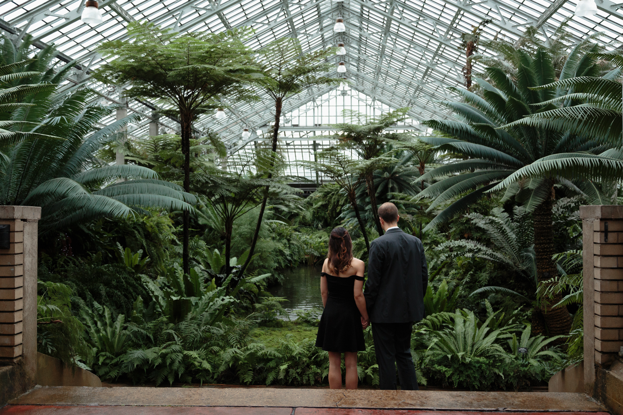 Engaged at the Garfield Park Conservatory