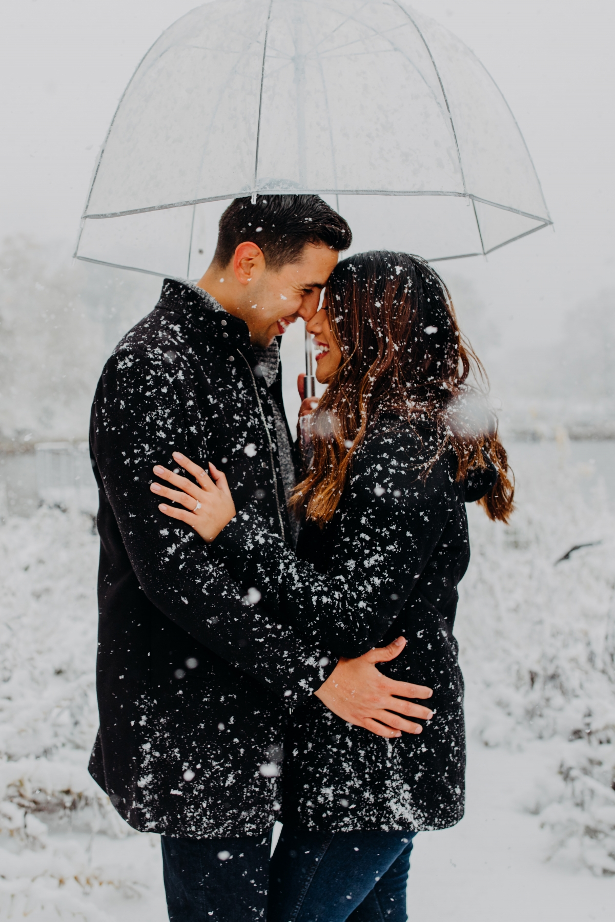 Snowy Chicago Proposal at Lincoln Park Zoo